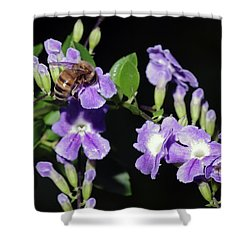 Shower Curtain featuring the photograph Honeybee On Golden Dewdrop II by Richard Rizzo