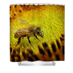Shower Curtain featuring the photograph Honeybee On Sunflower by Chris Berry