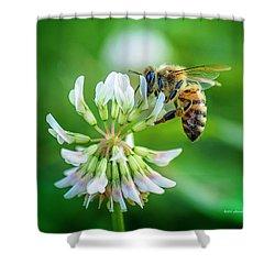 Honeybee On White Clover..... Shower Curtain