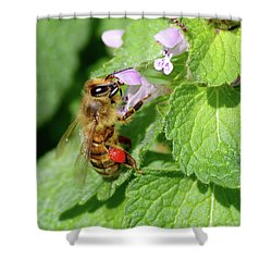 Honeybee With Pollen Shower Curtain