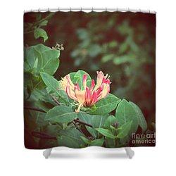 Honeysuckle Shower Curtain by Mini Arora