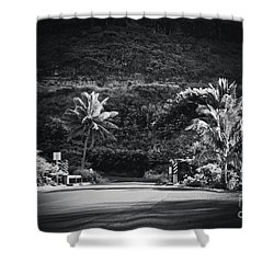 Shower Curtain featuring the photograph Honokohau Maui Hawaii by Sharon Mau