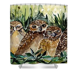 Hoo Is Looking At Me? Shower Curtain