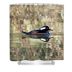 Hooded Merganser Shower Curtain by Elizabeth Budd