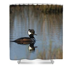 Hooded Merganser In The Early Morning Light Shower Curtain