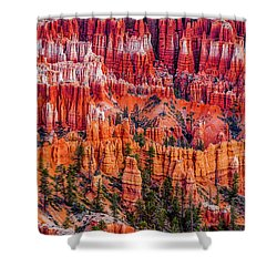 Hoodoo Forest Shower Curtain