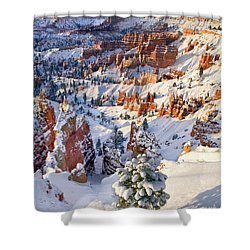 Shower Curtain featuring the photograph Hoodoos And Fir Tree In Winter Bryce Canyon Np Utah by Dave Welling