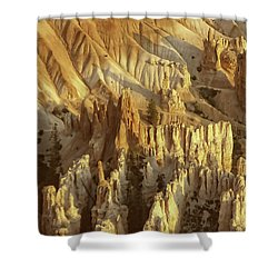 Hoodoos Shower Curtain by Anne Rodkin