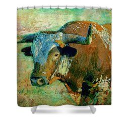 Hook 'em 1 Shower Curtain by Colleen Taylor