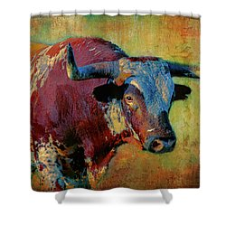 Hook 'em 2 Shower Curtain by Colleen Taylor