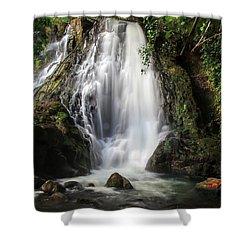 Hoopii Falls Shower Curtain