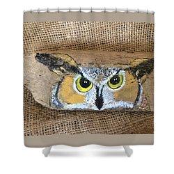 Hoot Owl Shower Curtain