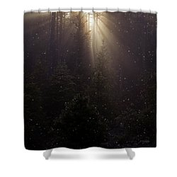 Hope And Faith - Winter Art Shower Curtain