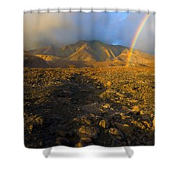 Hope From Desolation Shower Curtain by Mike  Dawson