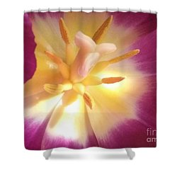 Hope Shower Curtain by Lori Lovetere