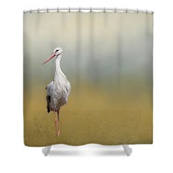 Hope Of Spring Shower Curtain by Eva Lechner