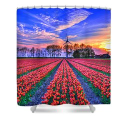 Hope Of Spring Shower Curtain by Midori Chan