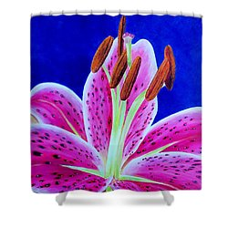Shower Curtain featuring the painting Hope by Susan DeLain