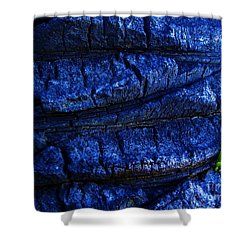 Shower Curtain featuring the photograph Hope by Vanessa Palomino