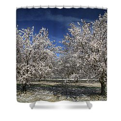 Hopes And Dreams Shower Curtain by Laurie Search