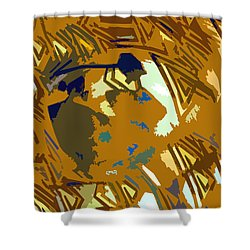 Hopi Flute Player Shower Curtain by David Lee Thompson