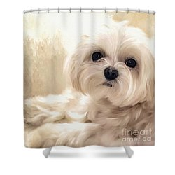 Hoping For A Cookie Shower Curtain by Lois Bryan