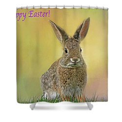 Shower Curtain featuring the photograph Hoppy Easter  by Donna Kennedy