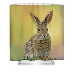 Shower Curtain featuring the photograph Hoppy Spring by Donna Kennedy