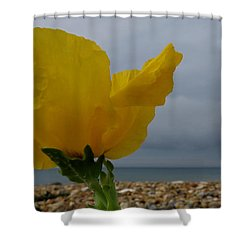 Horned Poppy By The Sea Shower Curtain