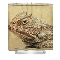 Horned Toad Shower Curtain by James W Johnson