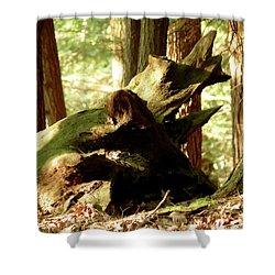 Horned Tree Shower Curtain