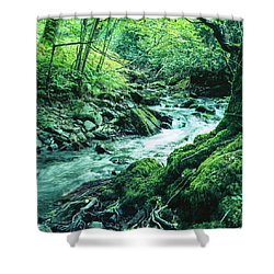 Horner Wood Shower Curtain
