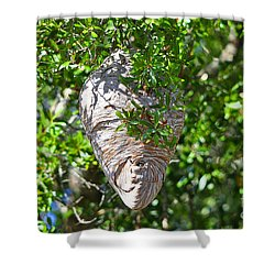 Shower Curtain featuring the photograph Hornets Home by Al Powell Photography USA