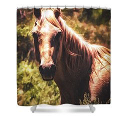 Shower Curtain featuring the photograph Horse  ... by Chuck Caramella
