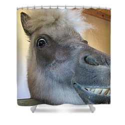 Horse 11 Shower Curtain