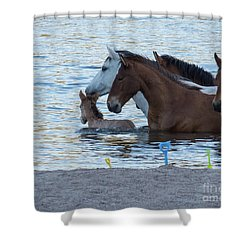 Horse 6 Shower Curtain