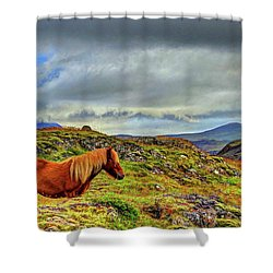Shower Curtain featuring the photograph Horse And Mountains by Scott Mahon