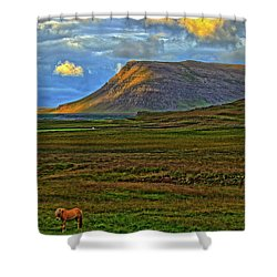 Shower Curtain featuring the photograph Horse And Sky by Scott Mahon