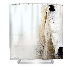 Horse Art - Waiting For You  Shower Curtain by Sharon Cummings