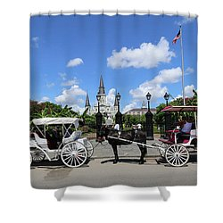 Shower Curtain featuring the photograph Horse Carriages by Steven Spak