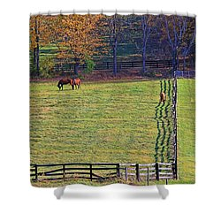 Horse Country # 2 Shower Curtain