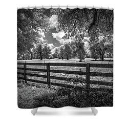 Shower Curtain featuring the photograph Horse Country by Louis Ferreira