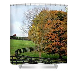 Horse Farm Country In The Fall Shower Curtain