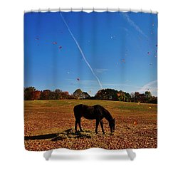 Horse Farm In The Fall Shower Curtain by Ed Sweeney
