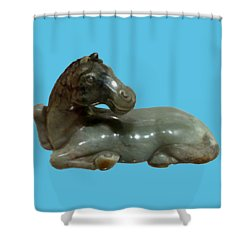 Horse Figure Shower Curtain