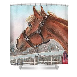 Horse Head Painting In Watercolor Shower Curtain