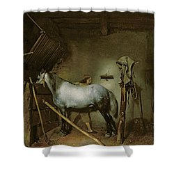 Horse In A Stable Shower Curtain by Gerard Terborch