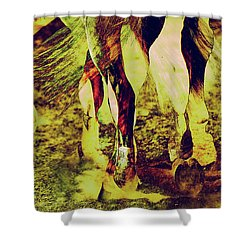 Horse Legs Shower Curtain