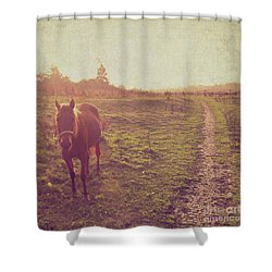 Shower Curtain featuring the photograph Horse by Lyn Randle