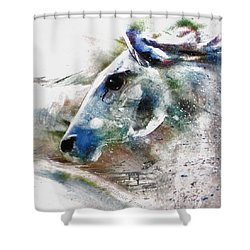 Horse Of Color Shower Curtain
